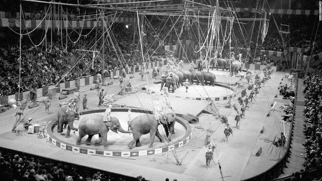 Elephants perform in New York in March 1964.