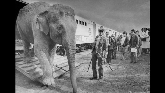 An elephant walks out of a boxcar near the show's famous animal trainer, Gunther Gebel-Williams, in 1979.