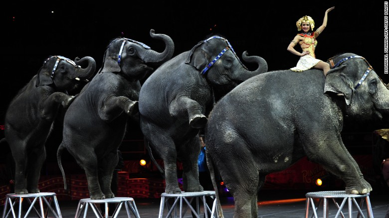 The Ringling Bros. elephants' last show streamed live on Facebook