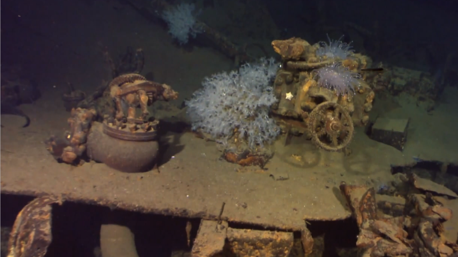 Shipwreck yields clue to WWII mystery - CNN Video