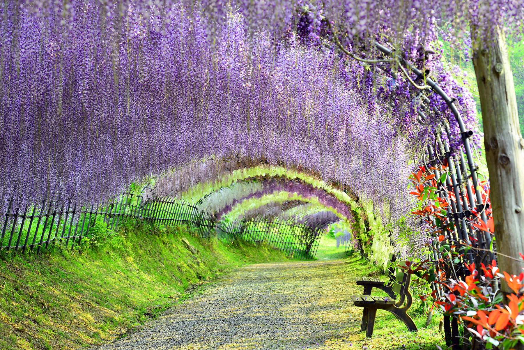 Photos japans 34 most beautiful places cnn travel izmirmasajfo