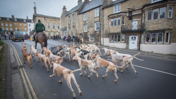 The hounds of the Heythrop Hunt arrive to greet hunt supporters in Chipping Norton. Clarkson lives in the Cotswolds village, not far from the home of his friend, UK Prime Minister David Cameron.