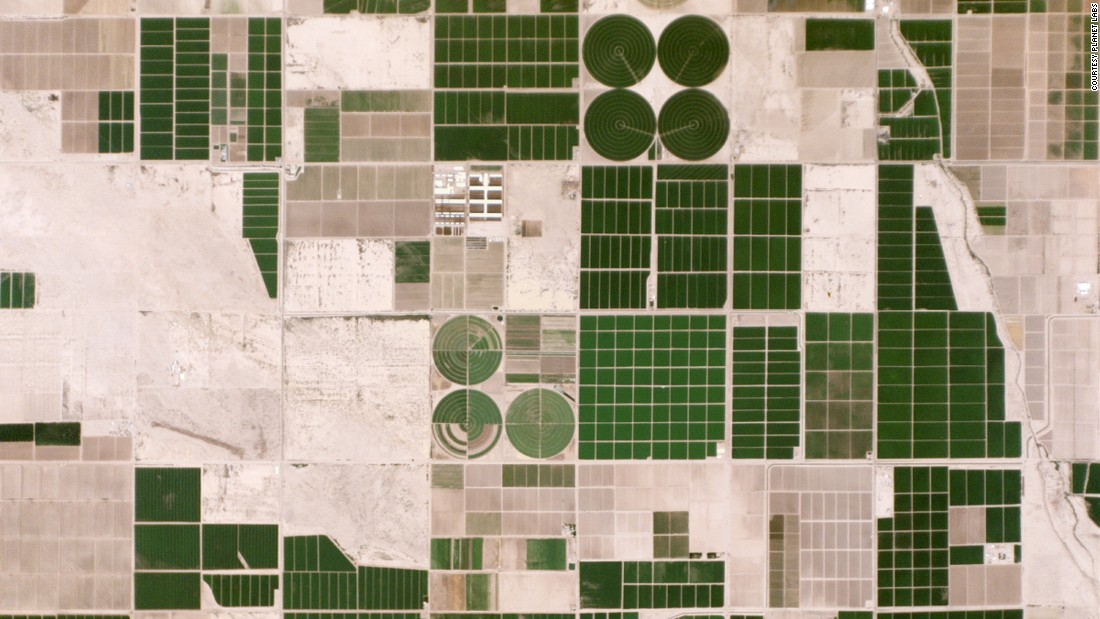 Irrigated fields in Pinal County, Arizona.