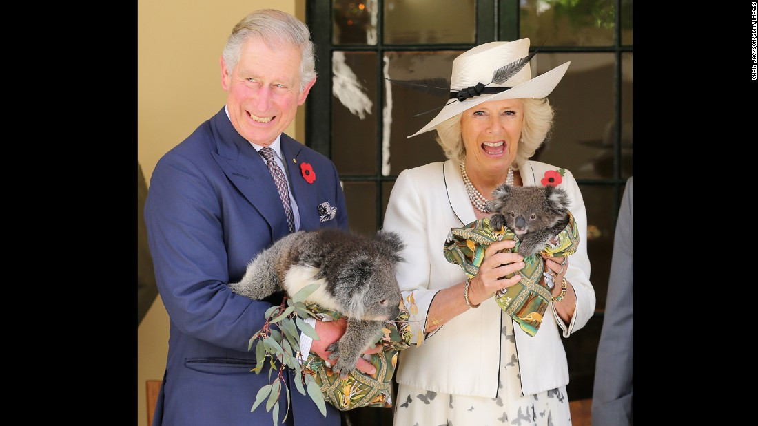 The royal couple hold koalas while visiting Australia in November 2012.