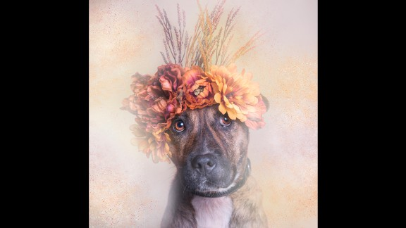 How can you resist Slim in a flower crown?