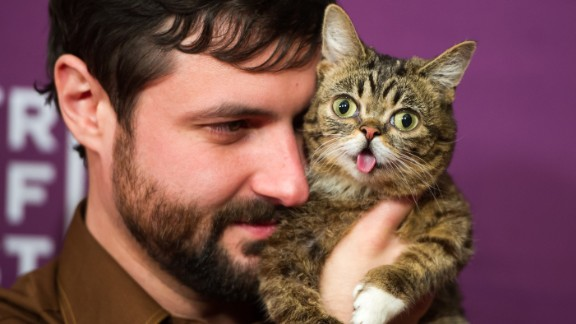 """Owner Mike Bridavsky and celebrity cat Lil Bub at the screening of """"Lil Bub & Friendz"""" during the 2013 Tribeca Film Festival in New York."""