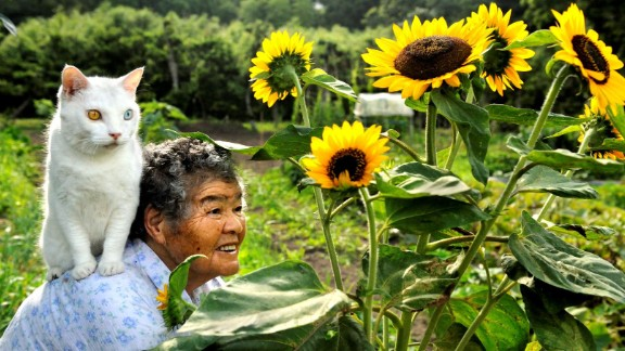 Misao, 88, and her odd-eyed cat Fukumaru in Japan. Misao found the stray cat when he was little. Misao