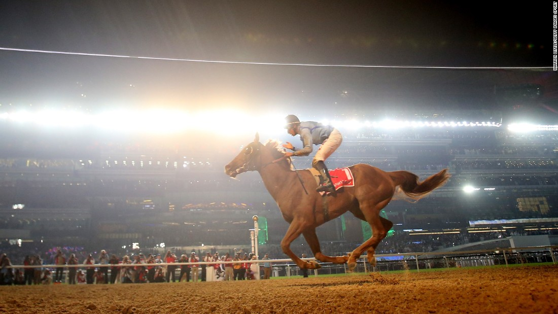 14-1 long shot Prince Bishop stormed from the back of the field to win the $10 million Dubai World Cup.