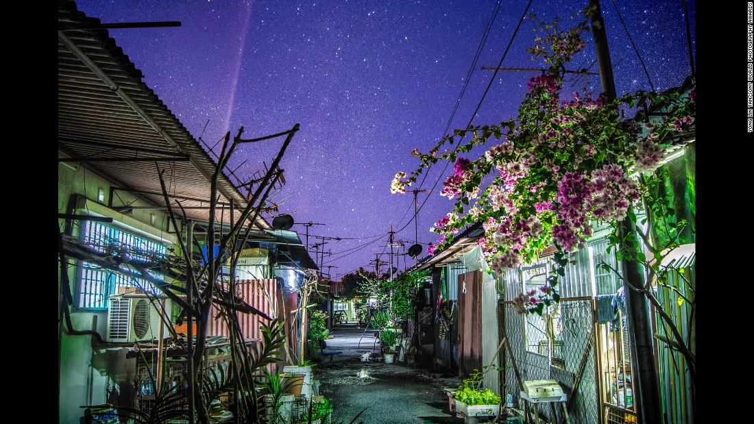 "<strong>""Back alley"" by Yong Lin Tan, 19</strong><br />Photographer's description: This is the back alley of my grandmother's house in Alor Setar, Kedah, Malaysia. I shot this during Chinese New Year last year when the sky is the clearest and brightest with stars. A flower plant can also be seen flourishing with limited resources and space. There (are) a lot of cats wandering around the back alley usually after dinner time, waiting to be fed by the good people around here."