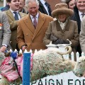 lamb national charles and camilla