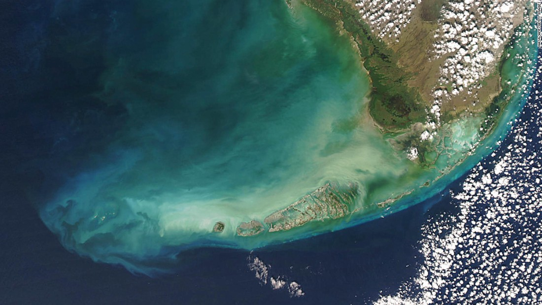 The next step is underwater: plankton, seen here from space, could be a good bio-indicator for earthquakes.