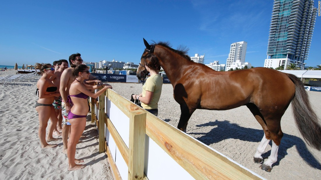 People hitting the beach have an unexpected chance to meet some of the world's top showjumping horses.
