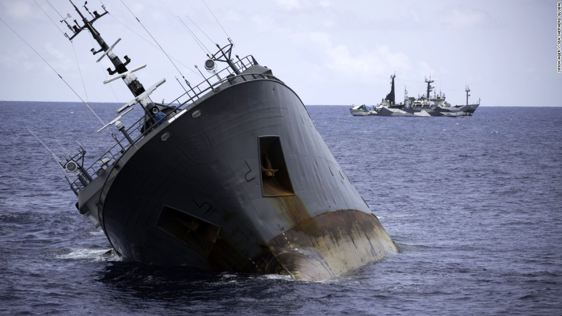The Sea Shepherd ships remain at a safe distance from the sinking Thunder.