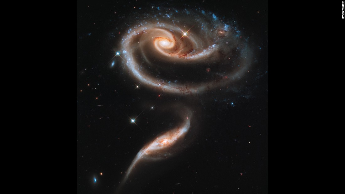 Hubble captured this image of a group of interacting galaxies called Arp 273. The bigger galaxy has a center disk that is distorted into a rose-like shape by the pull from its partner below.