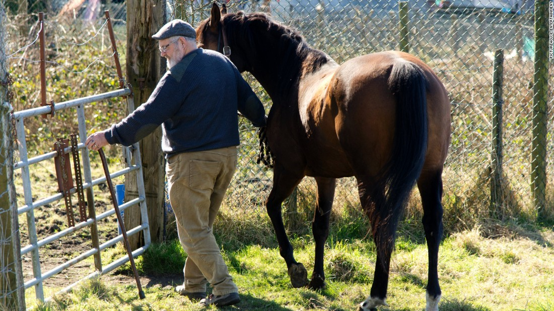 "Dream Alliance was bred and raised on an allotment in a run-down Welsh mining community by Brian Vokes (pictured) and his wife Jan. ""We bred a horse on a slag heap,"" explains Brian."