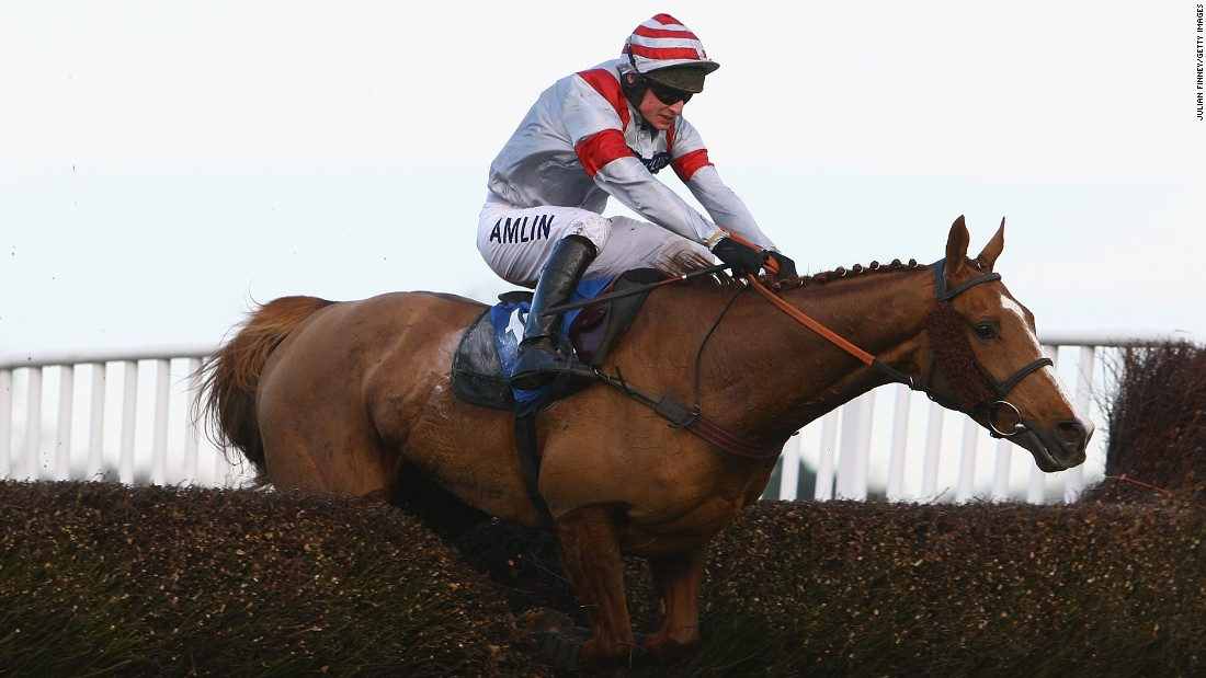 Dream Alliance's greatest triumph came in the 2009 Welsh National at Chepstow. It was a notable win as less than two years earlier Dream had pioneering stem-cell treatment to mend a snapped tendon in his leg.