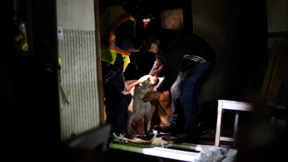 A dog is rescued from a destroyed home in Fairdale on April 9.