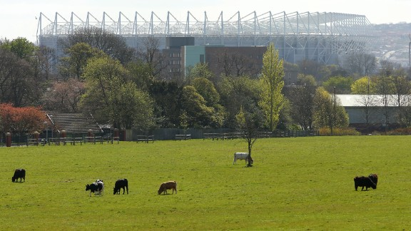 """The oft-used phrase """"football is a religion"""" really does apply to Newcastle, according to Forbes. It is a one-club city, and United's home ground St James' Park dominates the skyline. Forbes says: """"It's often said we have three cathedrals in the city: the Anglican, the Catholic Cathedral and St James' Park."""""""