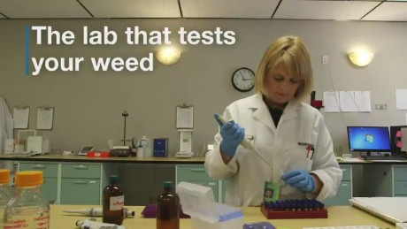 cnn$ marijuana test lab colorado_00001704
