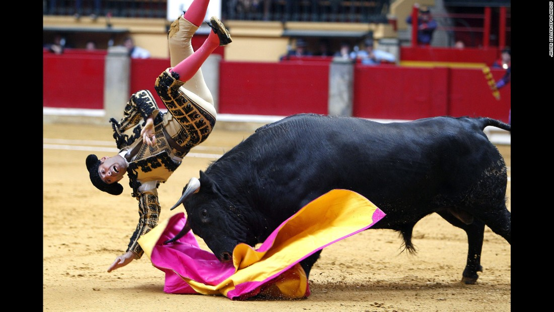 An assistant bullfighter is gored during a training fight held Sunday, April 19, in Zaragoza, Spain.