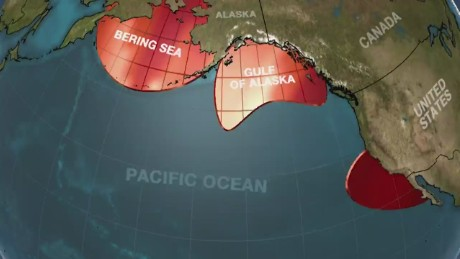 Pacific Ocean's 'Blob' concerns scientists