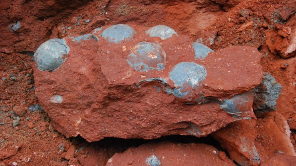 Construction workers came across fossilized dinosaur eggs during road repair work in the southern Chinese province of Guangdong on April 19.