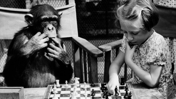 Strategy games like chess will improve logical thinking and problem-solving.