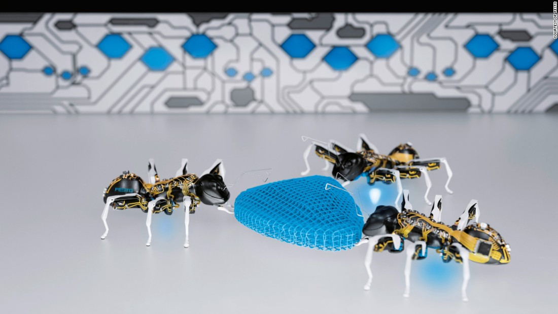"Festo, another German manufacturer, invests heavily in <a href=""http://edition.cnn.com/2015/05/06/tech/mci-bionic-insects/"">biomimicry</a>: one if its latest creations is a set of robotic ants."