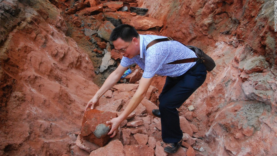 "Construction workers <a href=""http://www.cnn.com/2015/04/22/asia/gallery/dinosaur-eggs-china/index.html"" target=""_blank"">unearthed 43 fossilized dinosaur eggs</a> during road repair work in Heyuan, China, on Sunday, April 19. Nineteen of the eggs are completely intact, a museum official said."