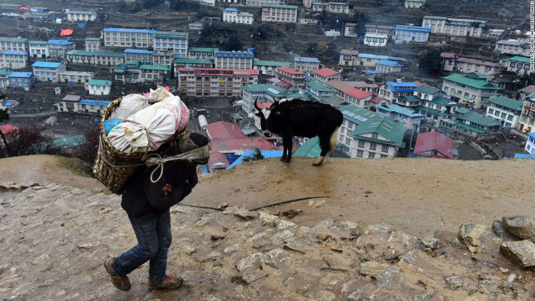 A porter carries a load of beef high above the Nepalese village of Namche Bazaar on Friday, April 17.