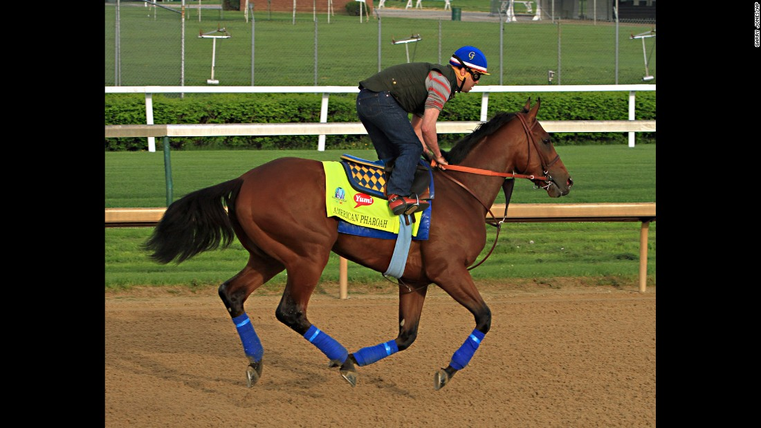 Kentucky Derby hopeful American Pharaoh has a run over the track at Churchill Downs in Louisville.