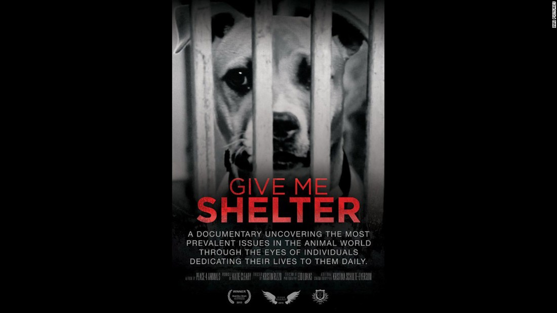"<strong>""Give Me Shelter"" (2014):</strong> Animal rights issues and those who dedicate themselves to that fight are the focus of this documentary. <strong>(Netflix) </strong>"