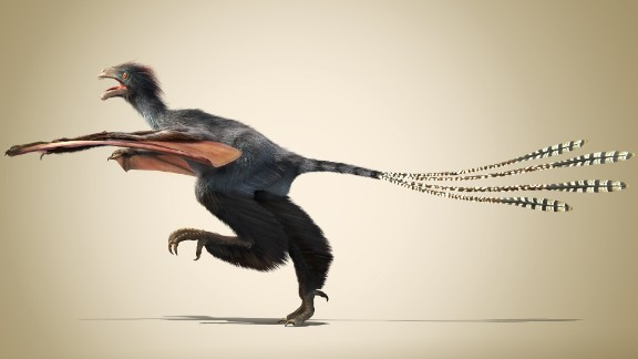 This unusual dinosaur with bat-like wings existed for a very short time 160 million years ago during the Jurassic Period.