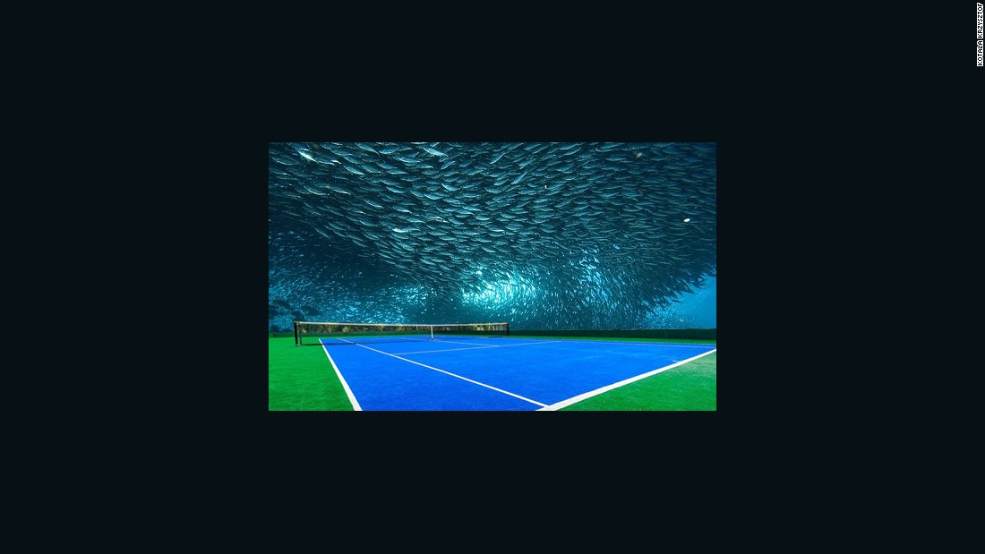 In case the tennis isn't up to scratch, the underwater court is designed to offer spectacular views of nature and could be built under the sea. The main arena is planned to seat 10,000 spectators.