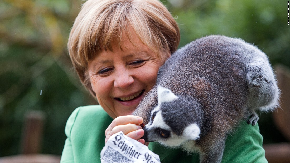 German Chancellor Angela Merkel feeds a lemur that is sitting on her shoulder during her visit at the bird park in Marlow, Germany, on Thursday, April 30. Merkel was scheduled to open the enclosure for penguins in the bird park.