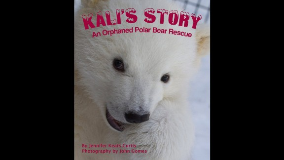 """""""Kali's Story: An Orphaned Polar Bear Rescue"""" by Jennifer Keats Curtis, illustrated by John Gomes was selected as the third grade to fourth grade book of the year."""