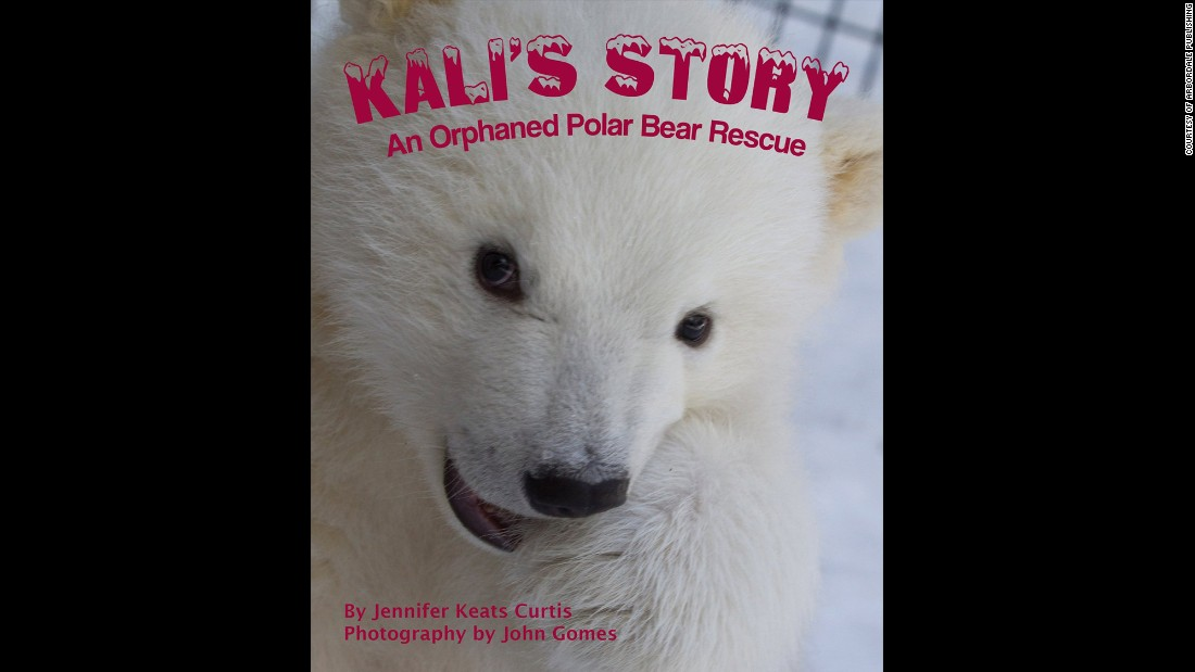 """Kali's Story: An Orphaned Polar Bear Rescue"" by Jennifer Keats Curtis, illustrated by John Gomes was selected as the third grade to fourth grade book of the year."