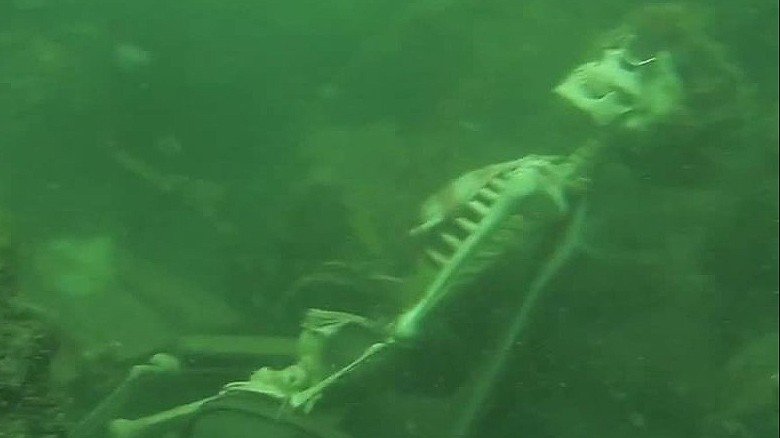 Diver discovers skeletons having underwater tea party