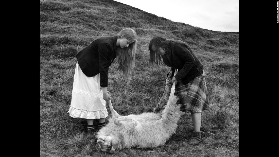 Sosnowska, right, helps carry a sheep.