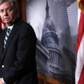 lindsey graham gallery 9