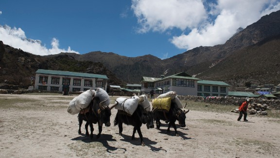 High in the hills, the mode of transportation is often animals such as yaks, donkeys and buffaloes.