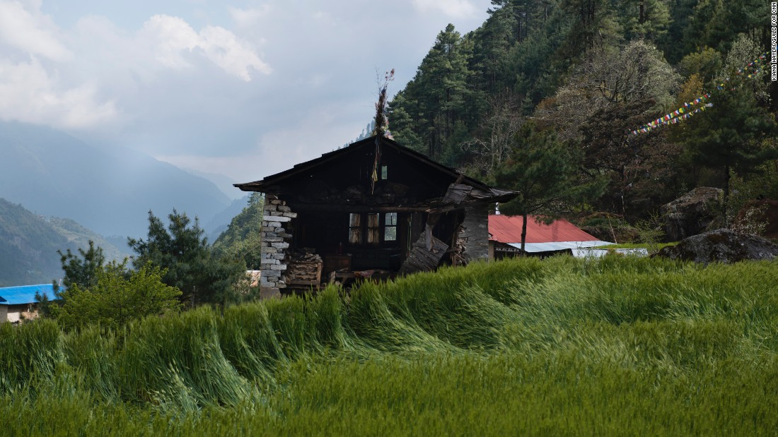 The fields are lush with new wheat, but little remains of this farmer's house in the village of Rimijung.