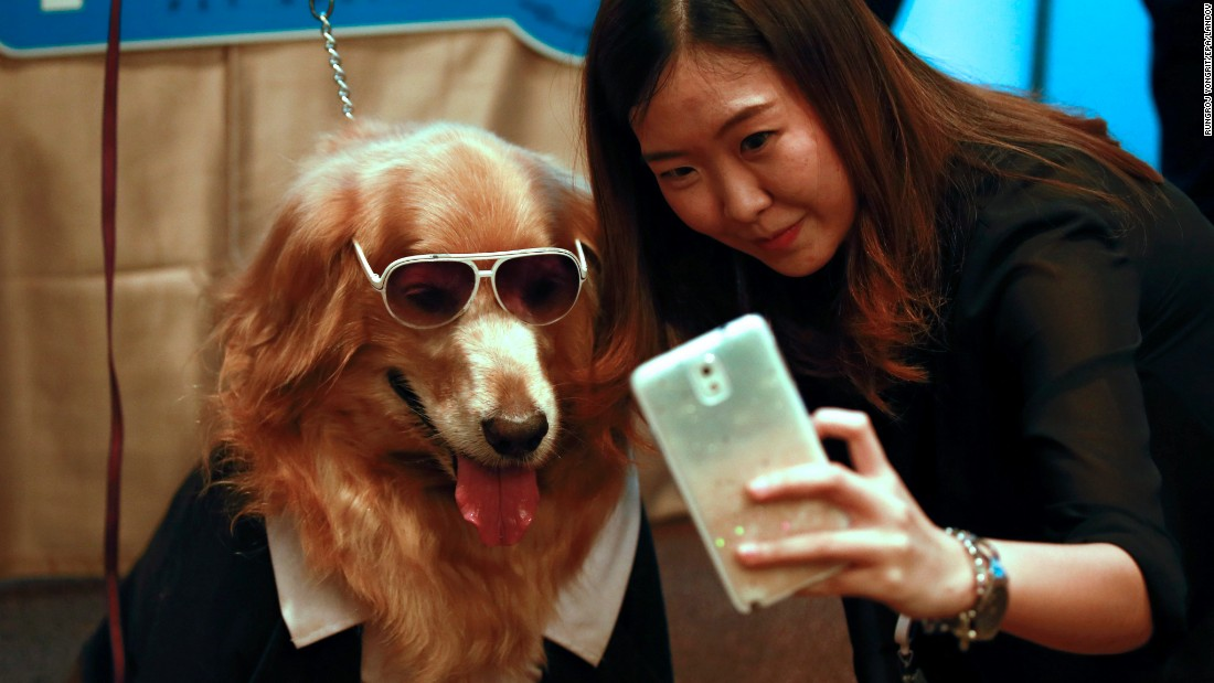 A woman in Bangkok, Thailand, takes a selfie with a golden retriever on Monday, May 11, during a news conference for Pet Expo Thailand. The pet fair will be held later this month in the Thai capital.