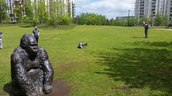 An unusual site in east London, a gorilla statue blocks the path to hole 13.