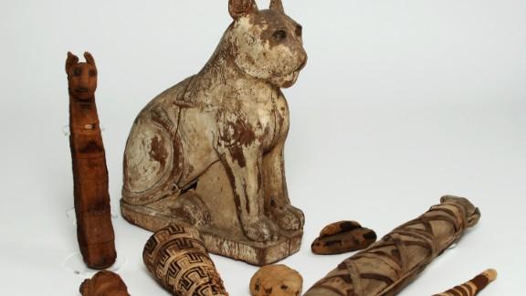 Mass shot of mummies from the Manchester Museum.