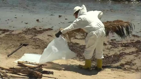 California oil spill cleanup begins