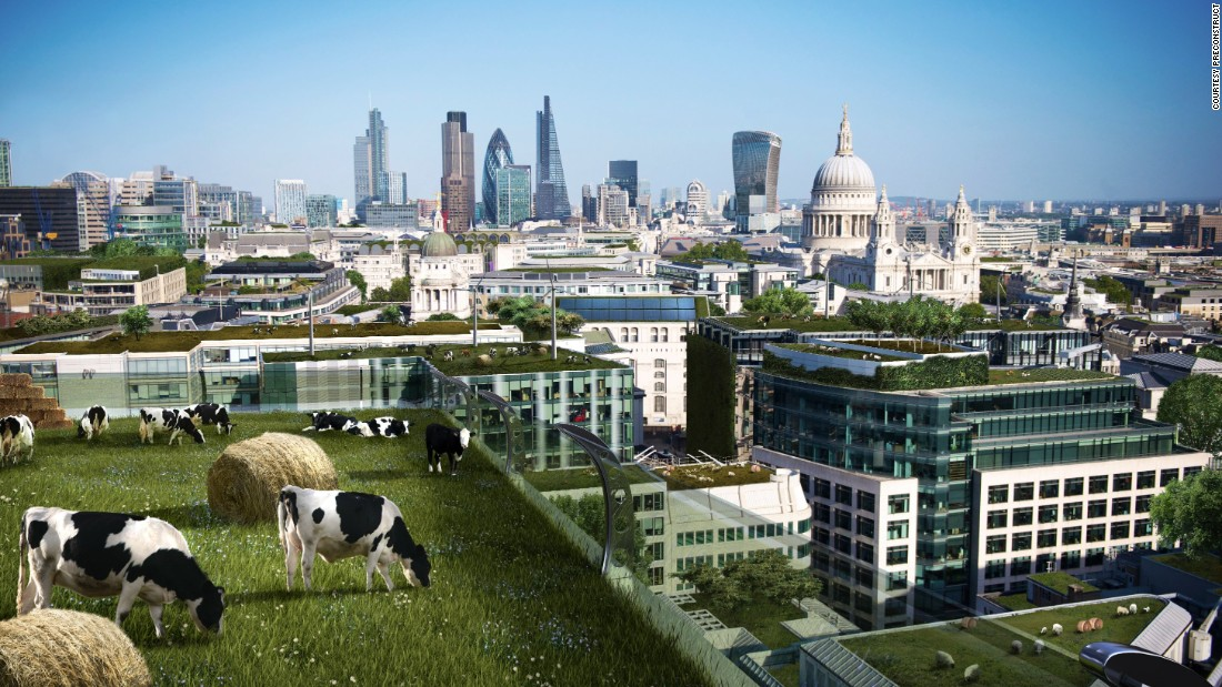 In 2015, a panel of UK urban experts predicted that cows will be grazing on top of London's skyscrapers by 2100.