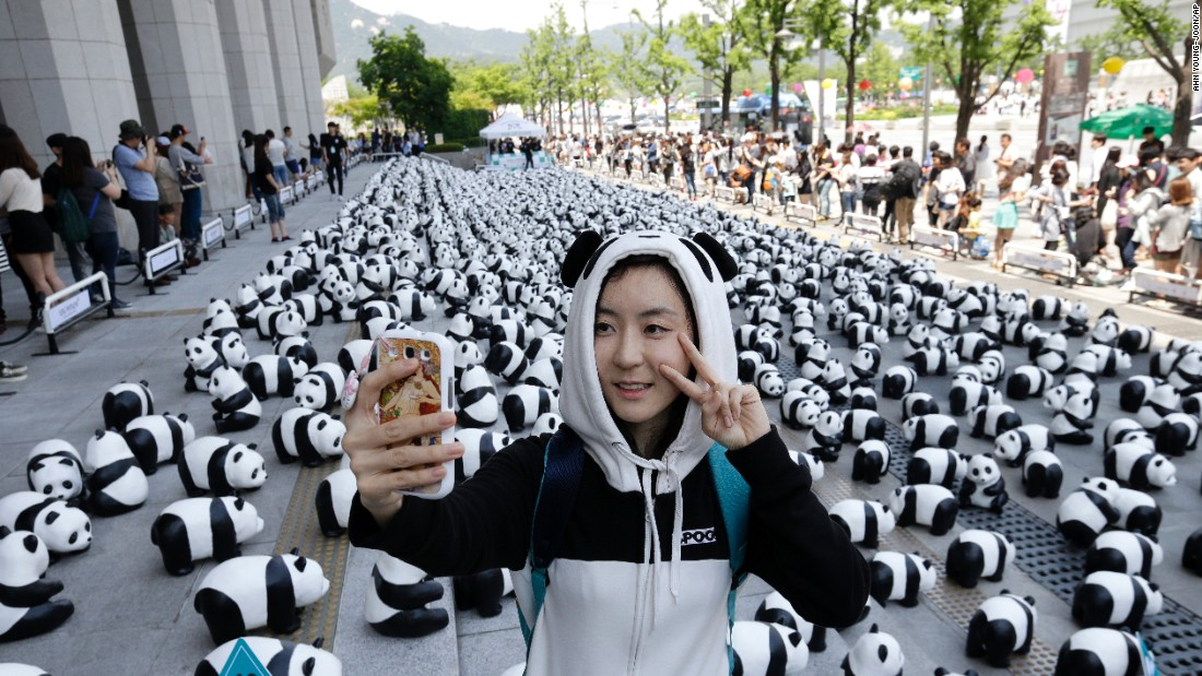 Song Yun-ah takes a selfie Saturday, May 23, with some of the 1,600 paper pandas created by French artist Paulo Grangeon in Seoul, South Korea. Grangeon has also taken paper pandas to other cities across the globe to raise awareness of how many real pandas are alive in the wild today.
