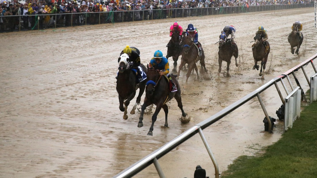American Pharoah leads the field into the first turn of the Preakness. The Preakness is the second leg of the Triple Crown, following the Kentucky Derby.