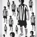 Football art gallery botafogo